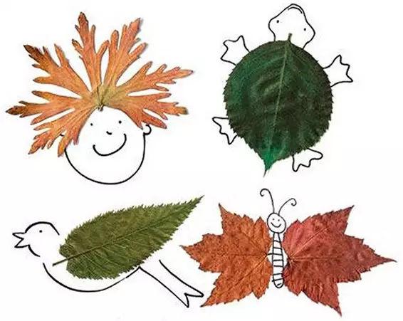 教育教学,秋季小课堂,带孩子们一起玩转树叶吧图片