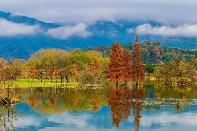 古徽州秋景独有的静谧和诗意,是中国秋意最浓的地方,去过了吗?