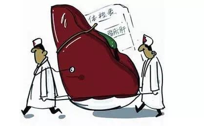检查发现脂肪肝,怎么办?