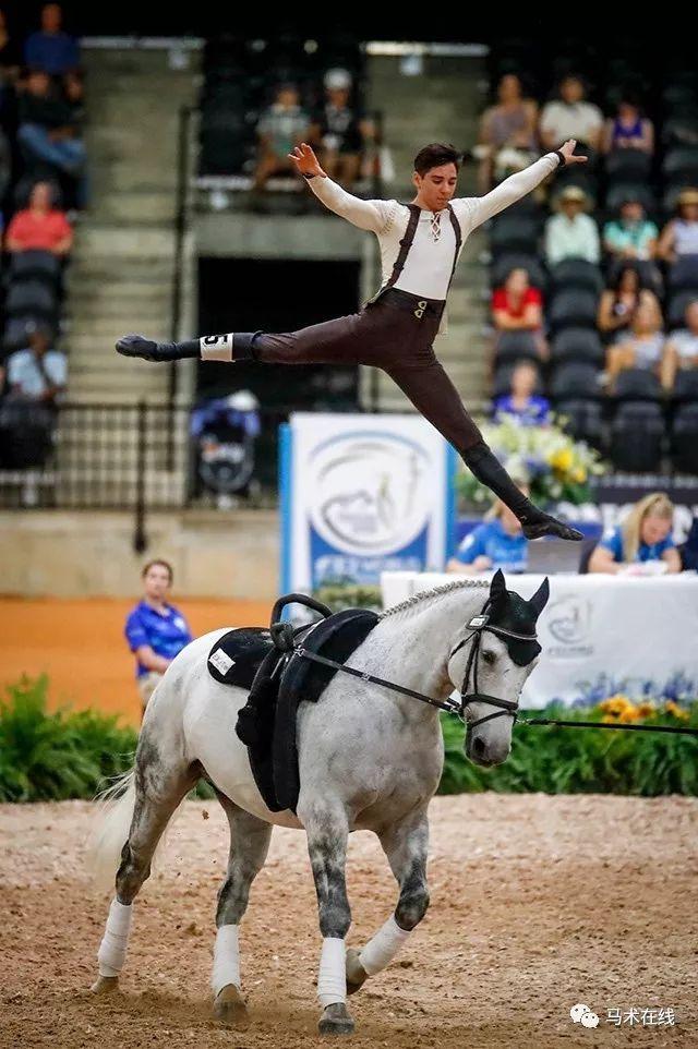 马的灵性与人体的柔美,世界马术运动会马背体操让人叹为观止