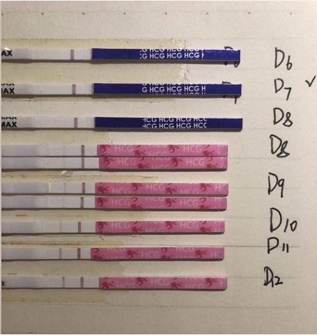 两次试管移植都是宫外孕,第三次移植终于见胎心胎芽了!
