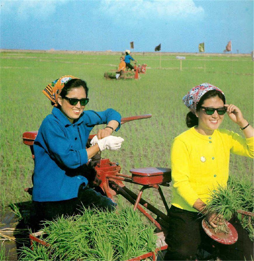 朝鮮農村,能夠看到的各種車_搜狐旅游_搜狐網圖片