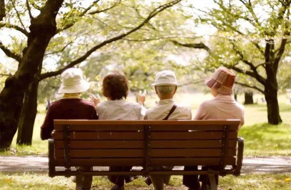 养老金占收入比_...老龄人口比例再创世界之最——日本再议延迟发放养老金