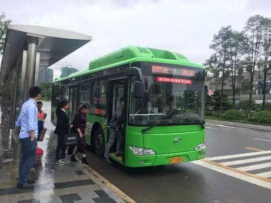 泸州小学生吐槽公交车作文火了!当地交通局这样回应……