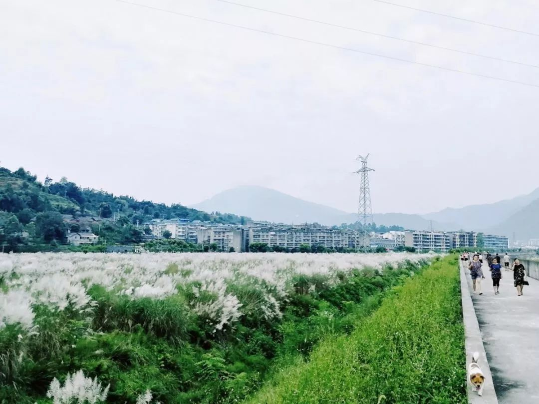宁远县禾亭镇大邦村