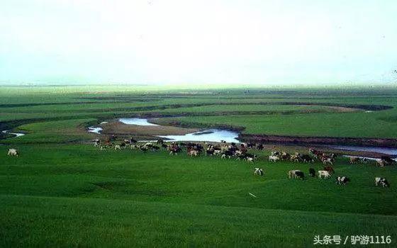 内蒙古和新疆哪的人口多_内蒙古阿尔山人口分布