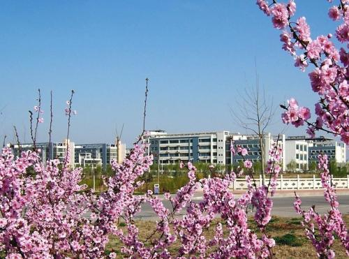 南京大学排名下滑严重!但江苏照样有10所大学挺