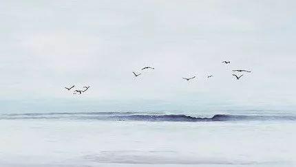 中秋诗享会 | 海燕