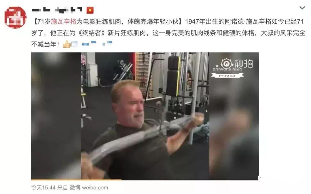 夜夜撸改成夜夜射影院_为拍《终结者6》,71岁施瓦辛格还在疯狂撸铁!