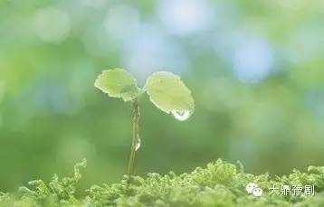 感悟:以出世的态度做人,以入世的态度做事_以出世的心态过入世的生活