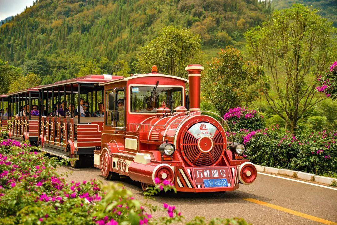 在小火车上坐着看风景,绝对是一种享受