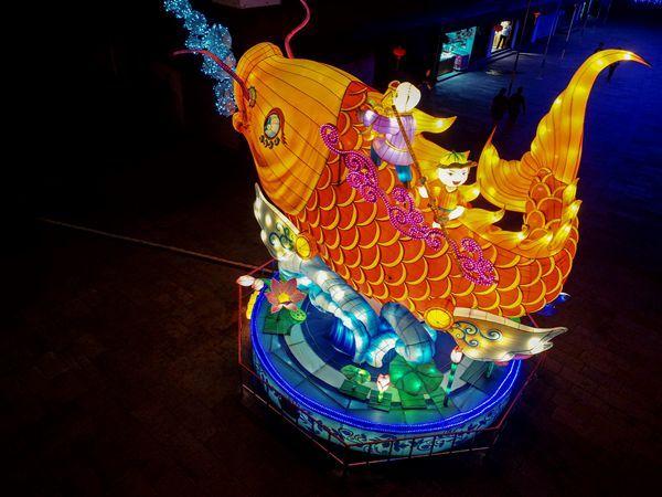 """月色灯海恍若仙境 """"中国第一水乡""""周庄约您共赴流光溢彩的灯会盛宴"""