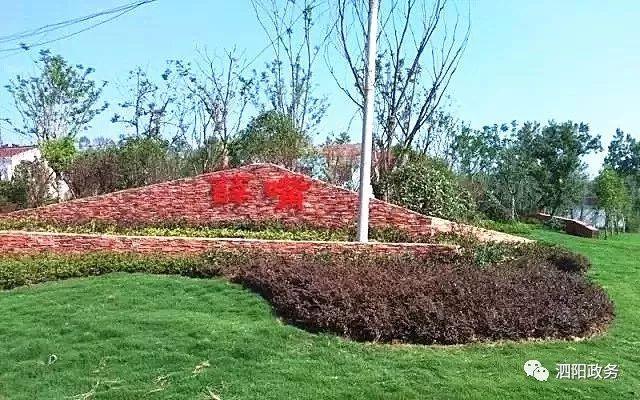 """泗陽有這樣一個地方,""""野""""有趣~_薛嘴村"""