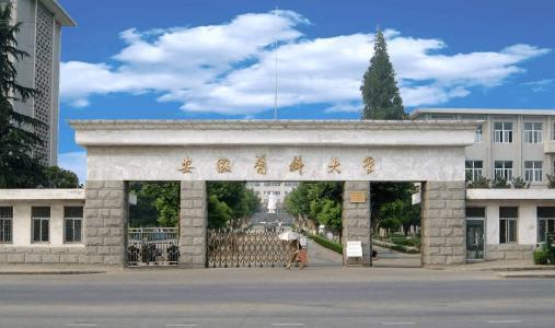 安徽省医药类大学的排名是怎样的?哪所医科大学的水平最高?