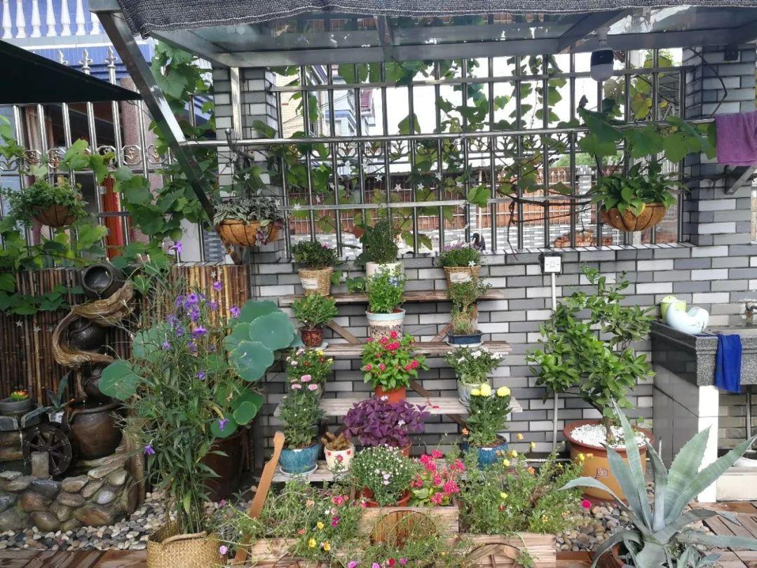 会玩!萧山小伙自己设计的新农村庭院小花园,说不羡慕都是假的图片