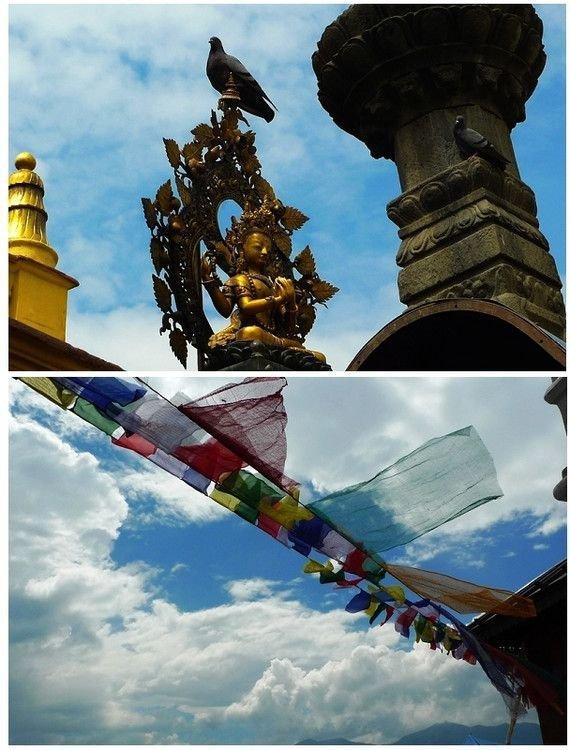 它是亚洲最古老佛寺,释迦摩尼曾来过,如今却被顽皮猴子据为己有