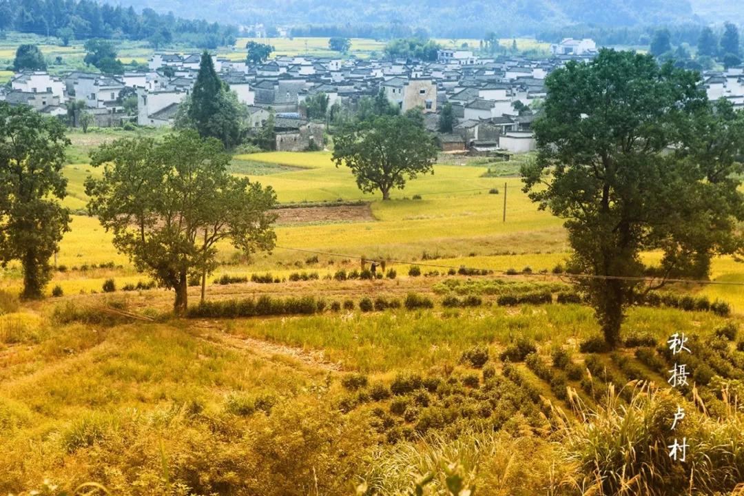 徽州這個古村落,竟藏著中國絕美秋色