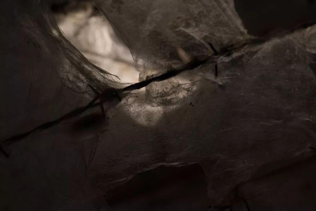 南山讲堂|梁绍基:恍——生命,延异,丝光,礼仪图片