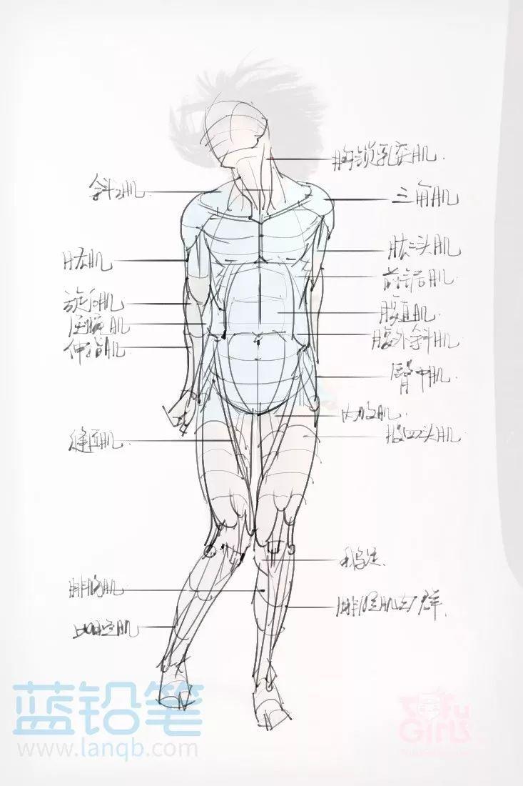 学习当中的背面手绘图