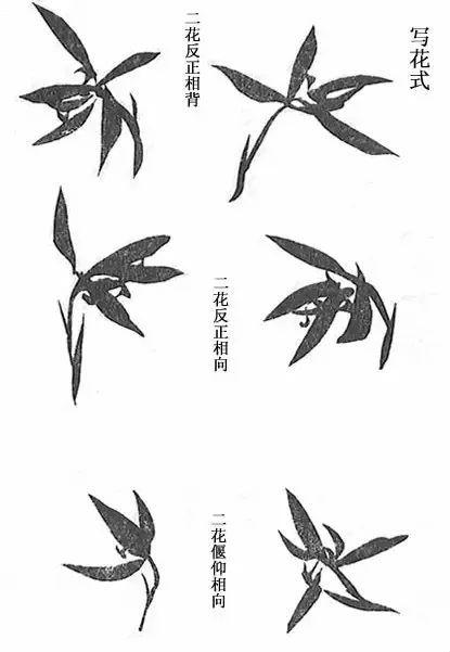 兰花怎么画 取法芥子园