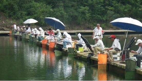收费塘抢鱼用硬竿是否真的能增加渔获且听前因后果