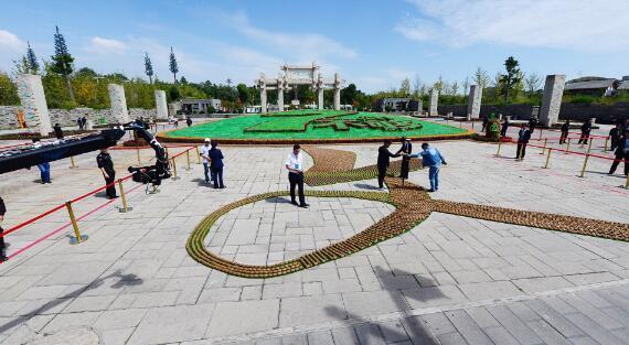 杭芡州猕价搜猕_中国水果界诞生一项新纪录17471颗猕猴桃把世界\