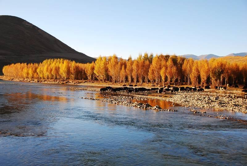 国庆一周后 才是去稻城亚丁最对的时候 川藏线旅游攻略 第3张