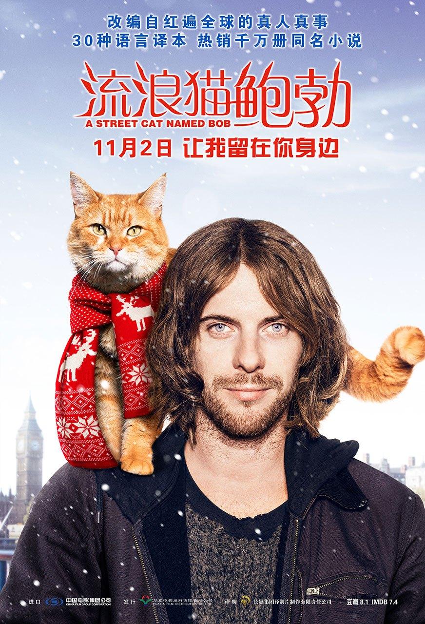 《流浪猫鲍勃》定档11月2日 罗杰·斯波蒂斯伍德亲自操刀