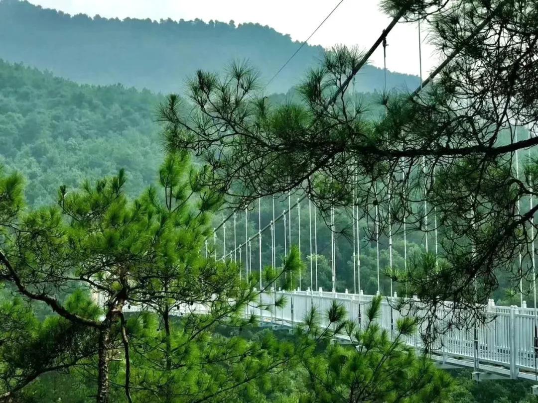 桂林市灵川县大圩镇逍遥湖景区图片