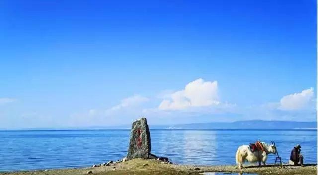 阿勒泰地区富蕴可可托海景区,伊犁那拉提旅游风景区,阿勒泰地区喀纳斯