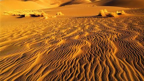 建造房子需要沙子,为啥沙漠里那么多沙子,却不能用?