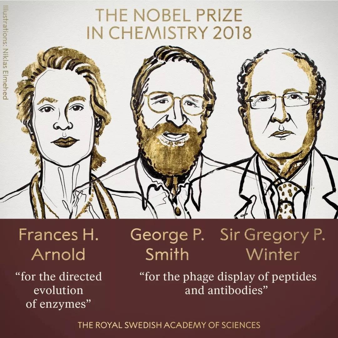 诺贝尔化学奖归属生物化学家  从制药到对抗疾病造福人类