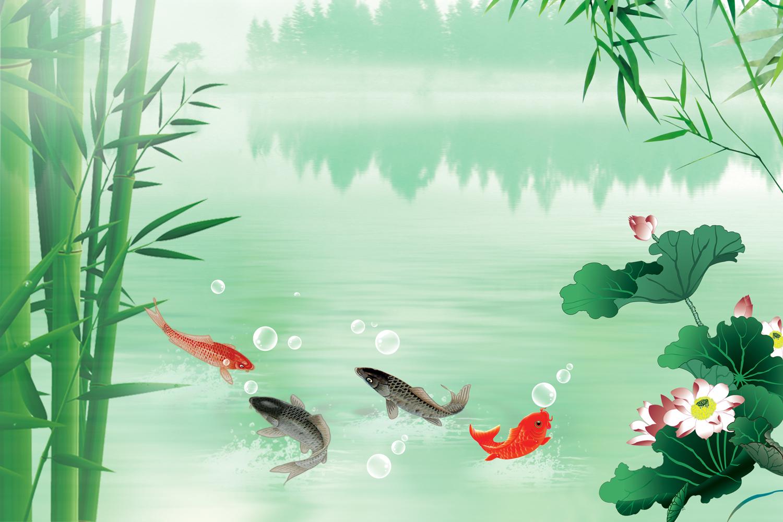 黑坑钓鲤鱼用什钓鱼渔具大全钓箱么样的饵料和小药最好?