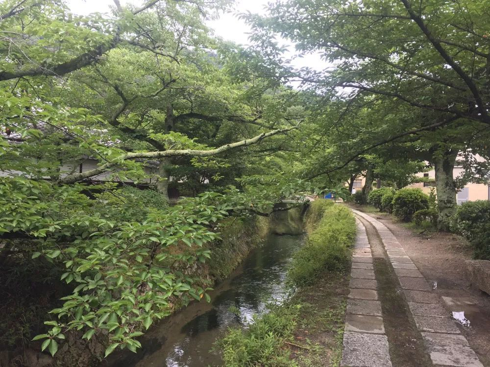 职业妈妈和两个学童在日本