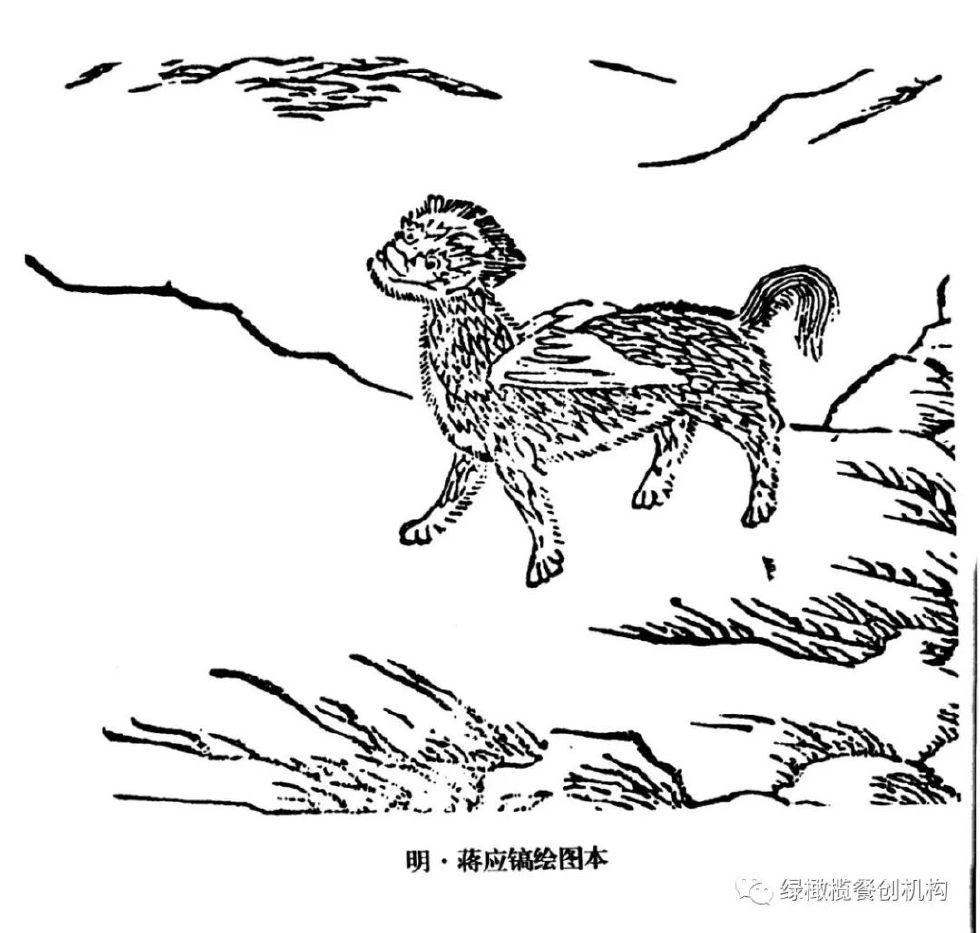 盗笔粉们,来自东北张家的穷奇纹身了解一下?