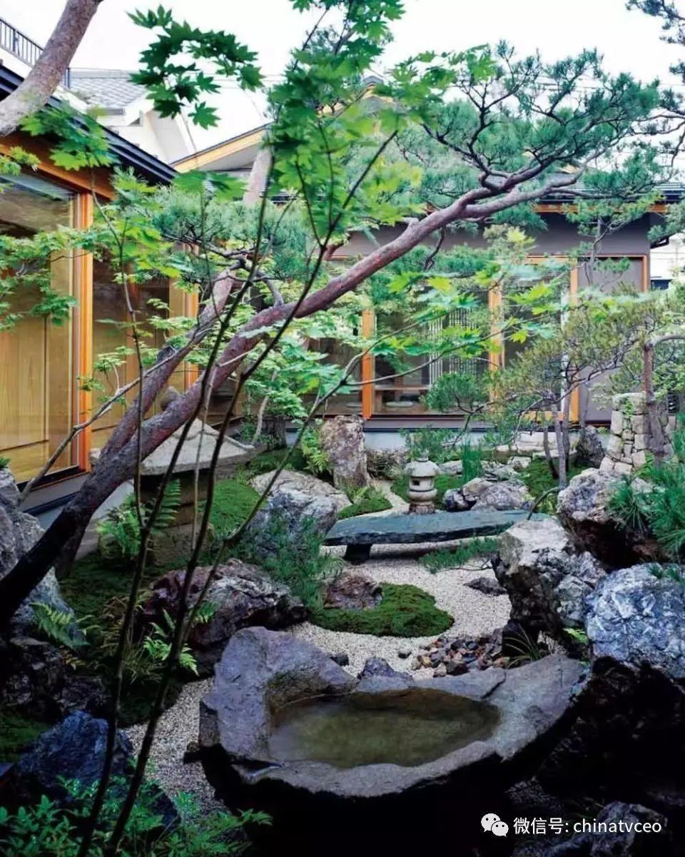 几个不错的禅意小院/晒一波新中式庭院景观,有别墅又有院子的人生圆满图片
