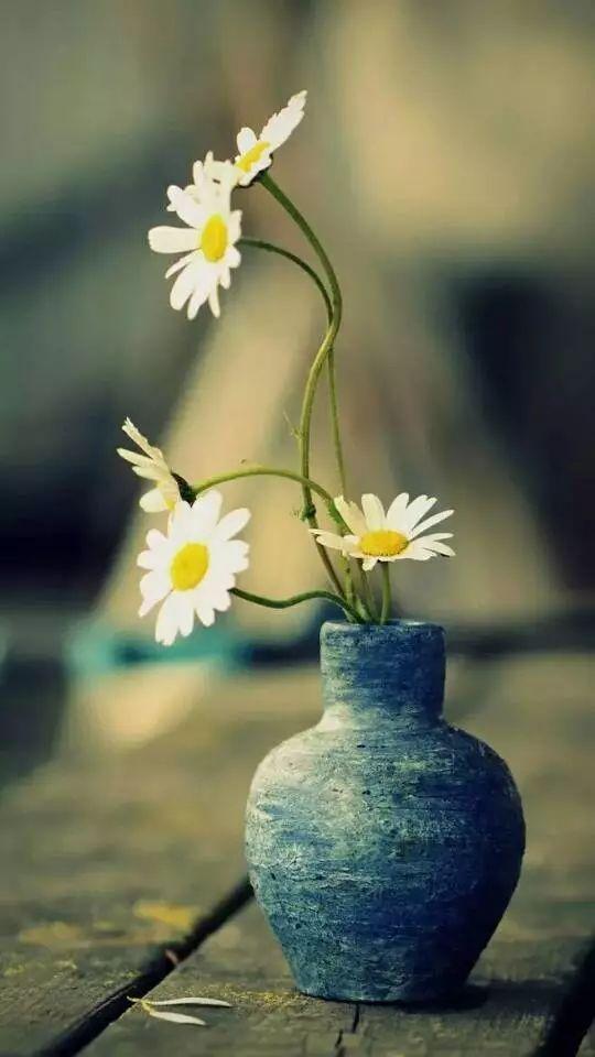 开悟的力量来自慈悲纯洁的心灵