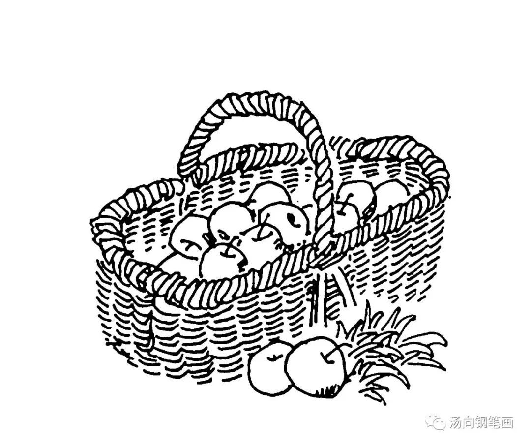 学钢笔画231水果篮子 好有味道