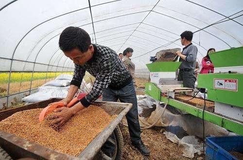 粮食危急正越来越严峻,该注重种粮和进步农夫种粮的积极性了。
