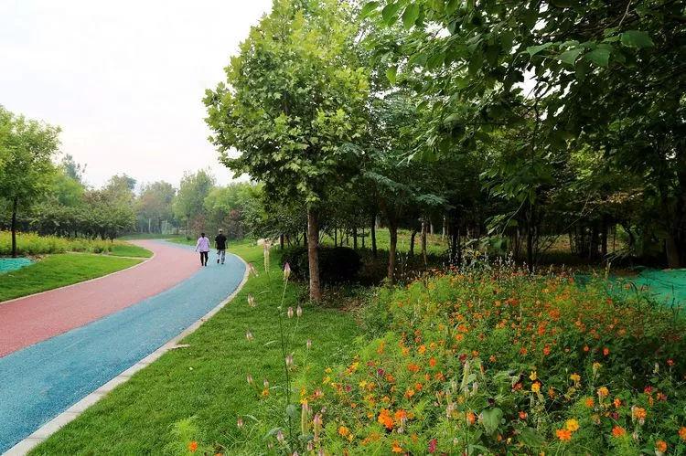 厉害了我的大邯郸,大邯郸也有自己的植物园了室内设计内装修效果图大全图片