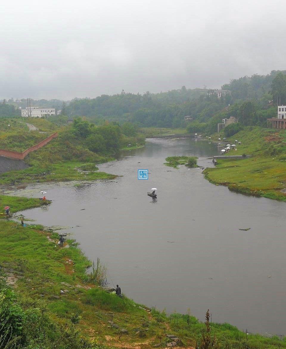 水库排水口支流,钓点犹如钓鱼竞技池塘,收获一条4斤的图片