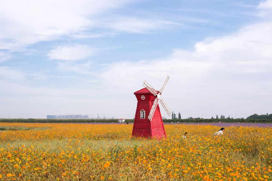 南京的后花園,不在安徽而在這里,中國首個國際慢城,處處花香!