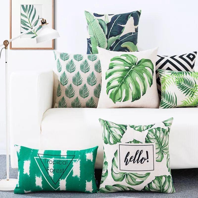 夏季家居搭配攻略 清新绿植让家更清爽