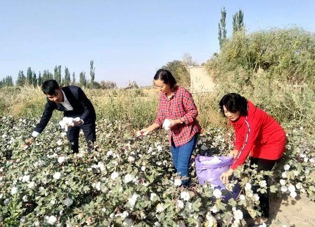 巴仁镇人口_新疆喀什地区加强基层基础建设工作推进会在伽师县召开