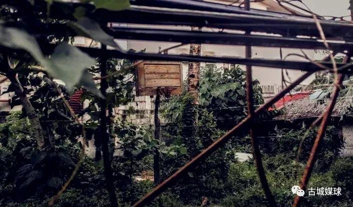 """【人物聚焦】菲律宾""""小勒布朗""""古城敞心扉_大众汽车道歉"""