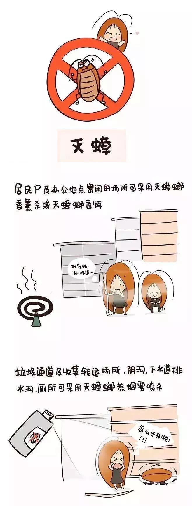 南京灭蟑螂