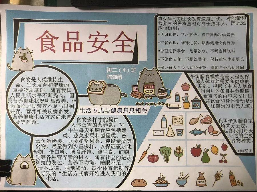 列活动之 食品安全 小报展