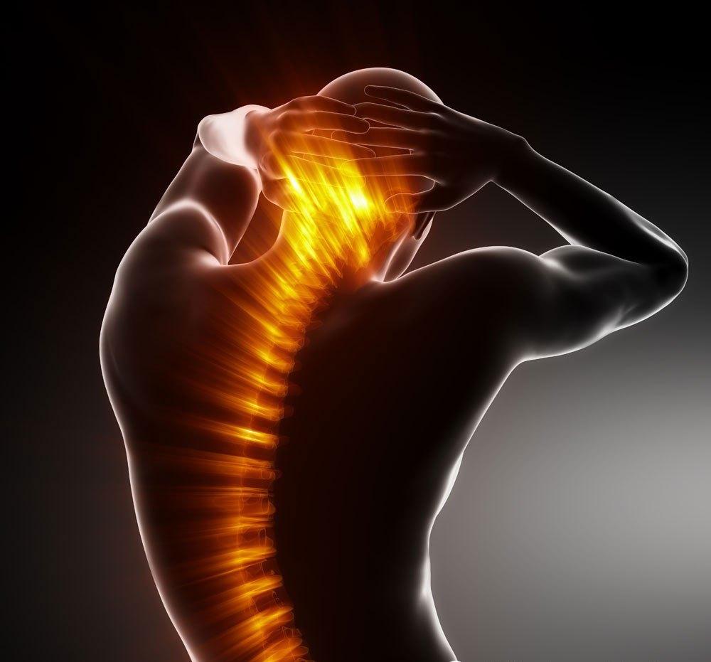 生物型股骨柄治疗原理