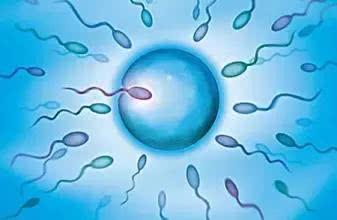 """精子也拼颜值!卵子不爱的""""小蝌蚪""""长这样"""