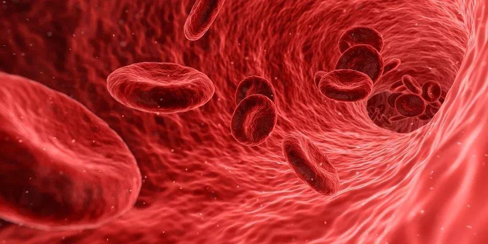 4个信号说明血液黏稠,早发现早预防,避免加重病情!